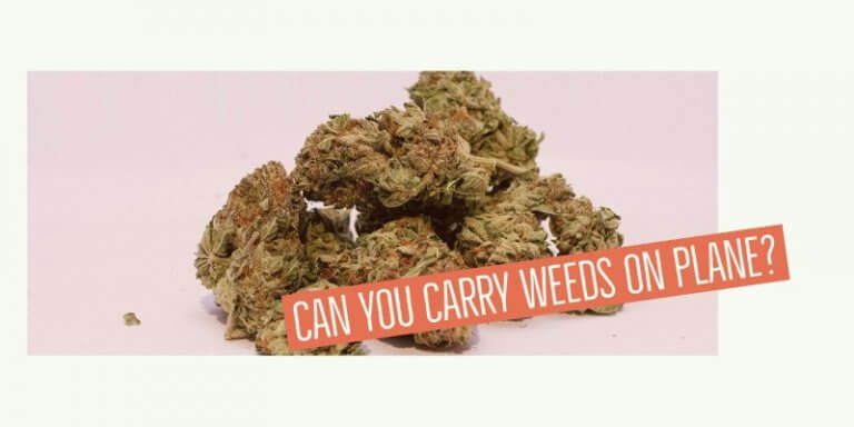 can you bring weed on a plane