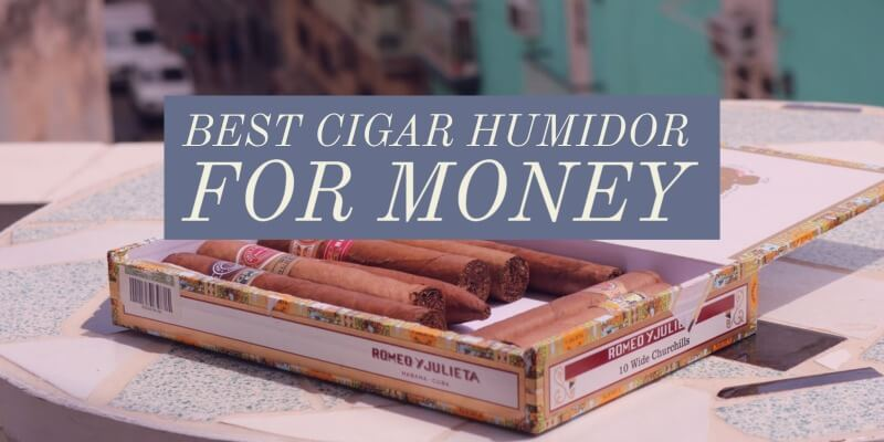 best humidors for the money you can buy