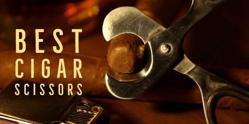 Best Cigar Scissors Reviews