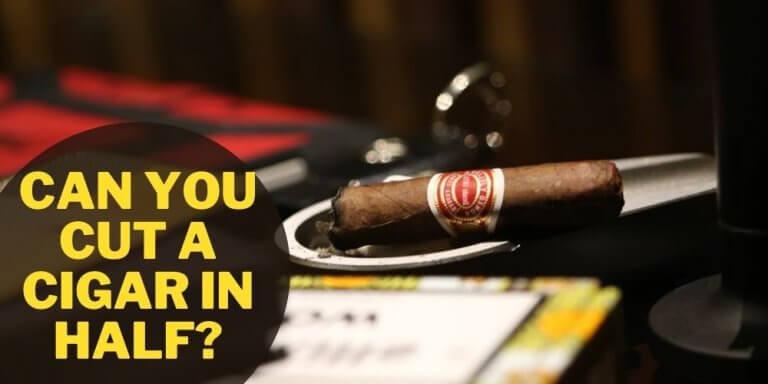 Can You Cut a Cigar In half